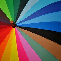 Пазл онлайн: Зонтик