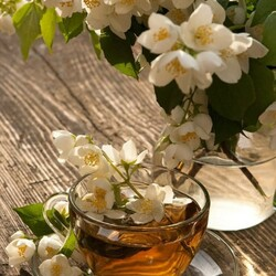 Пазл онлайн: Жасминовый чай