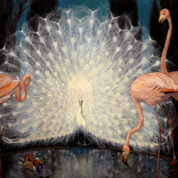 Пазл онлайн: Павлин и фламинго