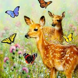 Пазл онлайн: Вместе с бабочками