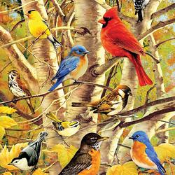 Пазл онлайн: Птичий сбор