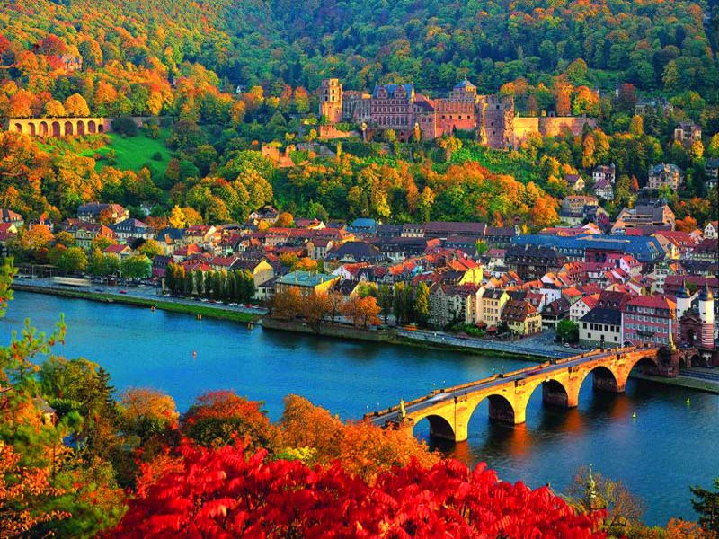 to the flowers of heidelberg by