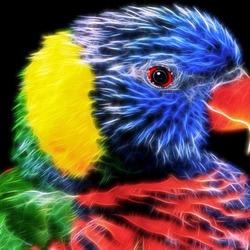 Пазл онлайн: Coloring \ Цвет