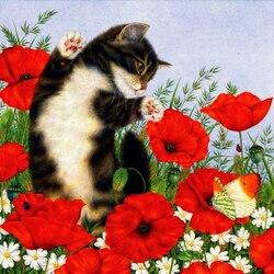 Пазл онлайн: Маки и кошка