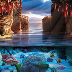 Пазл онлайн: Морское дно
