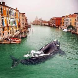 Пазл онлайн: Однажды в Венеции