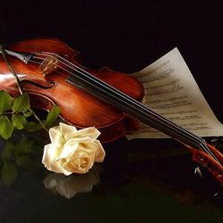 Пазл онлайн: Скрипка и роза