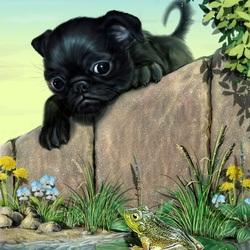 Пазл онлайн: Любопытный щенок
