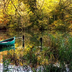 Пазл онлайн: Лодочка на пруду