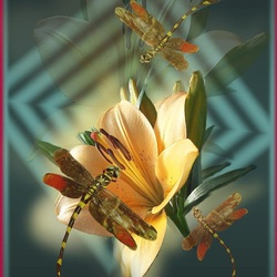 Пазл онлайн: Танцующие стрекозы
