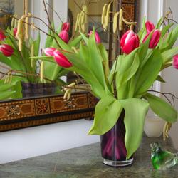 Пазл онлайн: Тюльпаны у зеркала