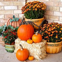 Пазл онлайн: Осенний декор
