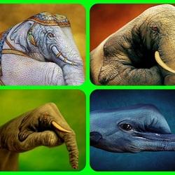 Пазл онлайн: Слоны