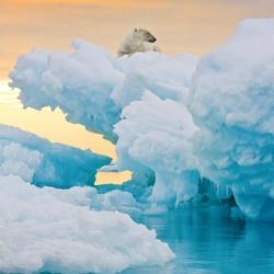 Пазл онлайн: Среди льдов