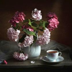 Пазл онлайн: Натюрморт с гортензией и чаем