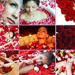 Пазл онлайн: Комплимент из роз