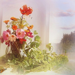 Пазл онлайн: У окна