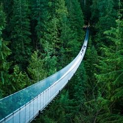 Пазл онлайн: Висячий мост Капилано