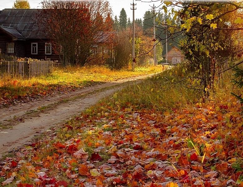 Деревня осенью Фото  Скачать