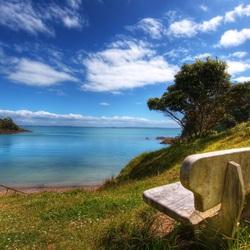 Пазл онлайн: Скамейка у воды