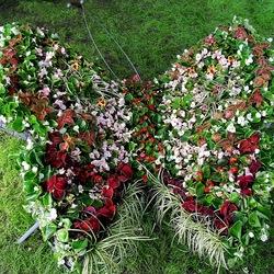 Пазл онлайн: Выставка цветов в Омске
