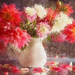 Пазл онлайн: Цветы и капли дождя