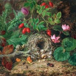Пазл онлайн: Птичье гнездо
