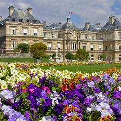 Пазл онлайн: Люксембургский дворец